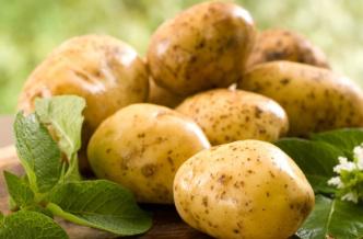 Маски для лица из картофеля от морщин: простые и эффективные рецепты