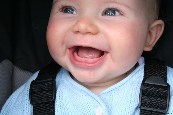 когда у детей режутся зубы фото