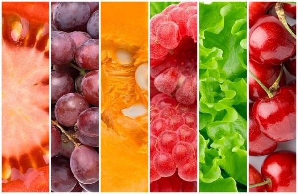 Виды вегетарианства. Их плюсы и минусы