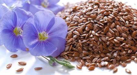 Льна семена