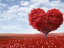 5 способов, как привлечь любовь